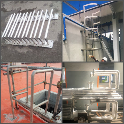 Various forms of cat ladders by Brooklynz stainless steel pte ltd